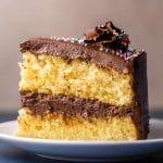 Gâteau avec glaçage au chocolat crémeux